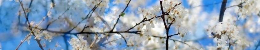 Metāldarbnīca ziema_pavasaris1-e1402436153871 Metāldarbnīcas vasaras jaunumi