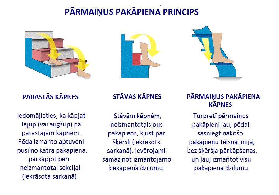 Parmainus Pakapiena Ilustracija