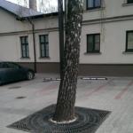 Metāldarbnīca Koka-saknu-aizsargs-17205-150x150 Galerija
